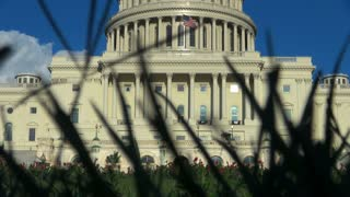 Grass View of the US Capitol Building