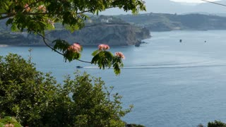 Greece Crete mimosa frames sea