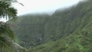Green Hawaii Mountains