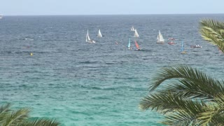 Group of Sailboats in Water Off Shore 2