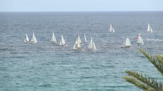 Group of Sailboats in Water Off Shore 4