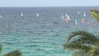 Group of Sailboats in Water Off Shore