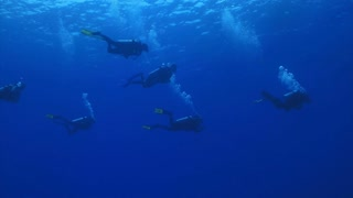 Group of Scuba Divers Swimming in Open Water