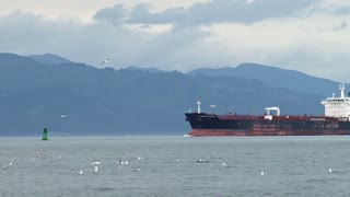 Gulls Soaring Around Oil Tanker