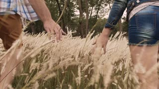 Hands of couple gently touching grass with hands while walking.