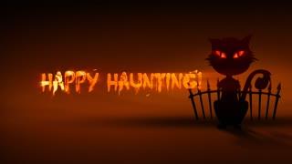 Haunting Cat Halloween