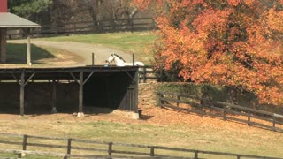 HD Farms & Countryside Autumn Farm 4