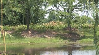 HD Pond