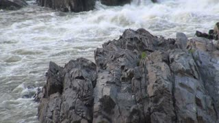 Heron Flying Around Jagged Rocks and River Rapids