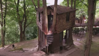 Hidden Treehouse with Trees Growing Through