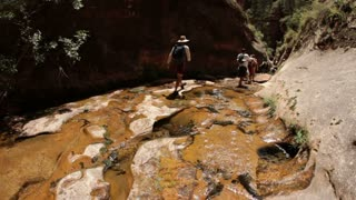 Hikers Walking Along Shallow Stream