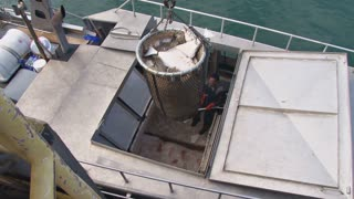 Hoisting Fish Bucket Off Ship