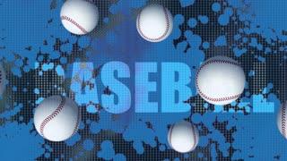 Home Team Baseball