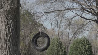 Homemade Tire Swing in Backyard 1