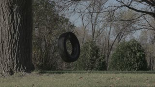 Homemade Tire Swing in Backyard 2