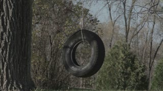 Homemade Tire Swing in Backyard 3