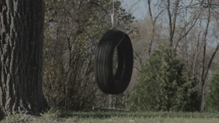 Homemade Tire Swing in Backyard 4
