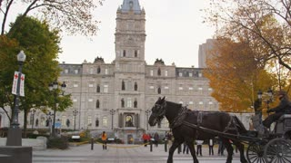 Horse and Carriage in Quebec City