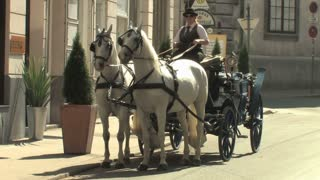 Horse and Carriage Vienna 2