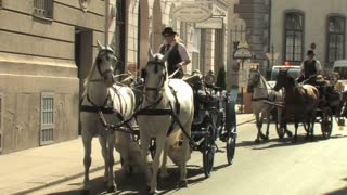 Horse and Carriage Vienna 3