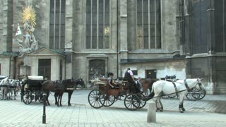 Horse and Carriage Vienna