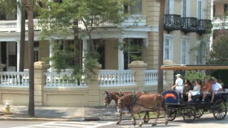 Horse Carriage Ride through Charleston 2