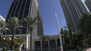 Hotels and Apartments in Miami with Palm Trees