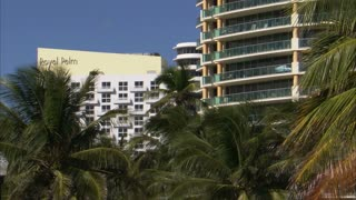 Hotels in Miami with Palm Trees