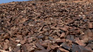 Huge Hill of Petrified Forest Shards 4