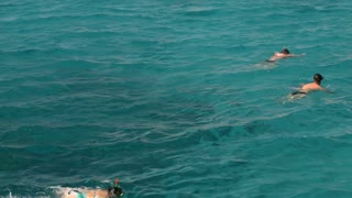 HURGHADA, EGYPT - FEBRUARY 1, 2014: Panning shot of tourists swimming in snorkeling masks in the pure sea water