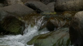 Iao Valley Slowmo Rapids 4