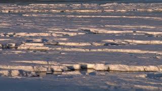 Icy Mud Flats