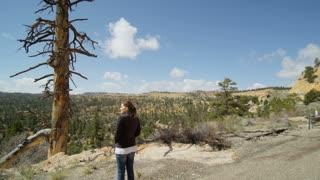 Jib Past Hiker Admiring Utah Landscape