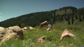 Jib Shot As Family Walks On Pathway Next To Alpine Lake