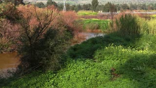 Jordan River in Israel 4