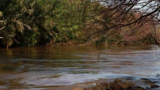 Jordan River in Israel 7