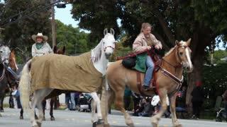 Ladies On Horses Walk Parade