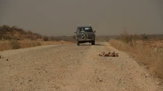 Land Cruiser Drives On Desert Dirt Road