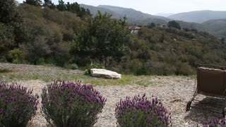 Lavender, Lounge Chairs, And Green Valley Below