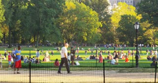 Life in Central Park