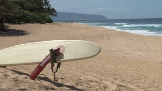 Lifeguard Equipment on a Hawaii Beach