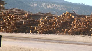 Log Truck Drives To Lumber Mill