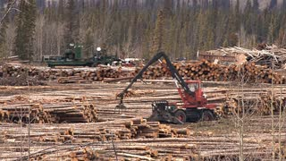 Logging Deck Yarder in Operation