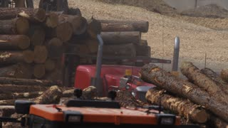 Logging Industry - Forestry and Wood Production