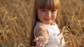Lovely little girl standing in wheat holding grain in her hand and smiling