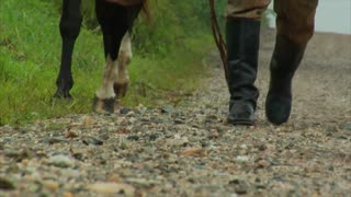 Man And Horse Walking