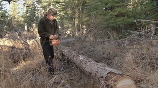 Man Chainsawing Branches off Log