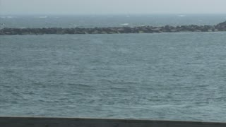 Man on Jet Ski in Inlet Park