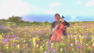 Man Playing Cello in Field of Flowers