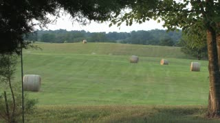 Many Bales of Hay 2